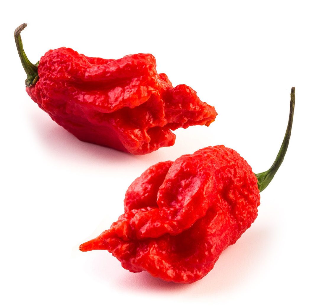 "Carolina Reaper ""HP22B Selected"" Chili semiačka"